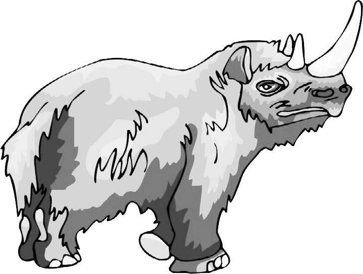 Гиперборейский носорог