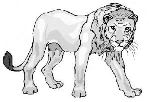 Гигантский лев или обычный? Вам решать.