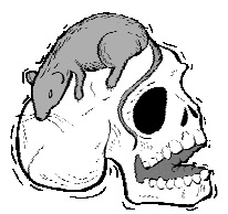 Писк моды для скелетов