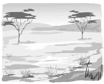 Типичный пейзаж Диких земель
