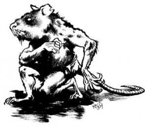Изрядно потрепаный крыслинг, сидящий в засаде