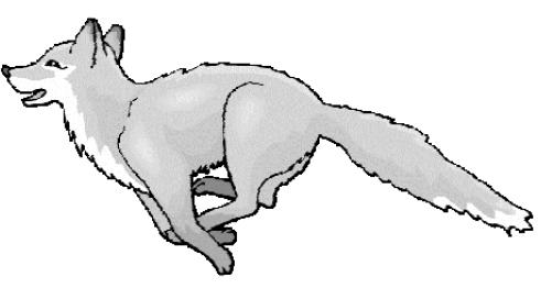 темесийская-лисица