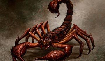 """Гигантский скорпион - """"рядовой"""" враг в настольных ролевых играх. Но только для тех, кто подходит к игре без особой фантазии."""